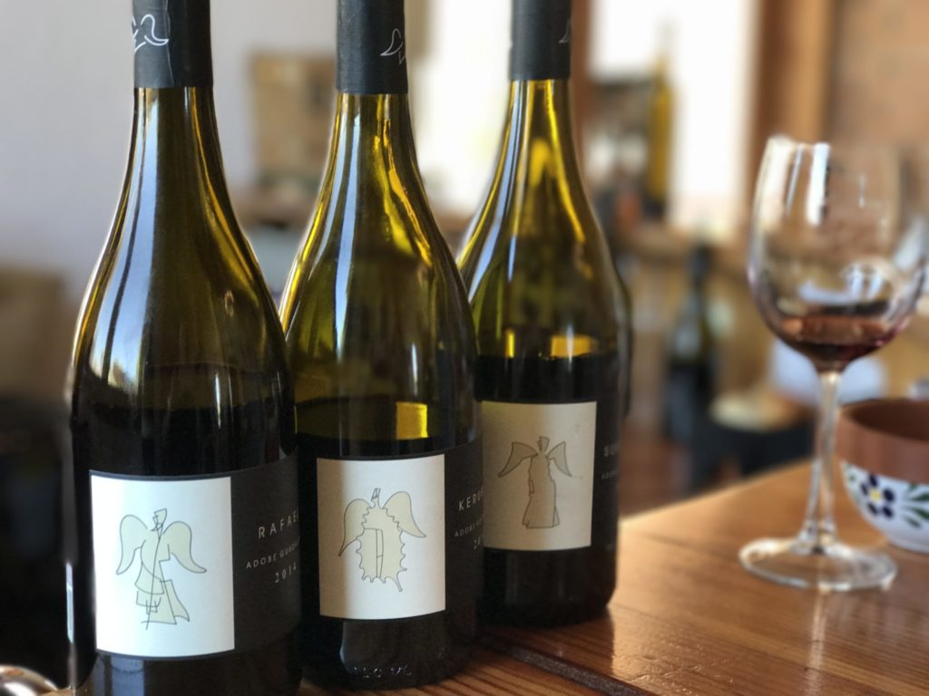 Valle de Guadalupe Winery Tour