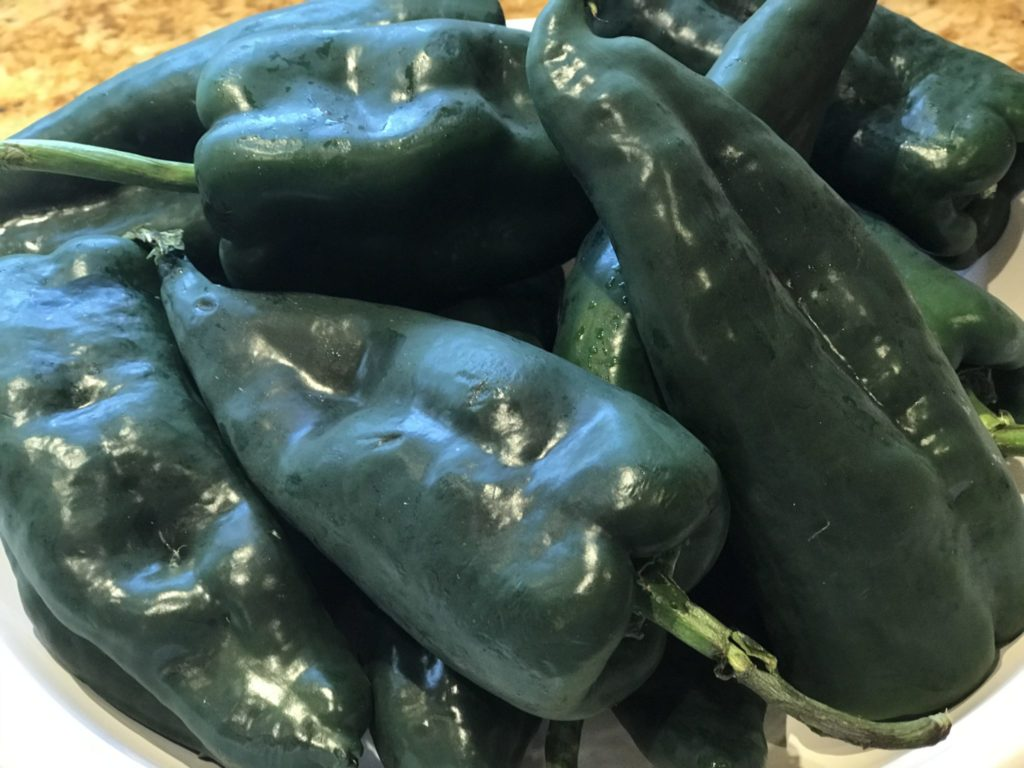 Poblano Peppers make great chile rellenos