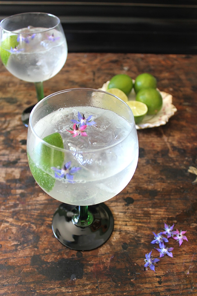 Classic Gin Rickey Cocktail recipe