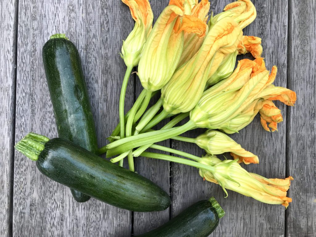 cooking with zucchini flowers