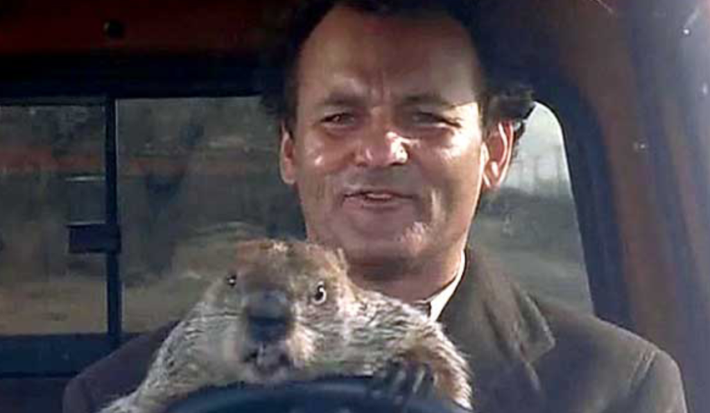 Bill Murray and Punxsutawney Phil