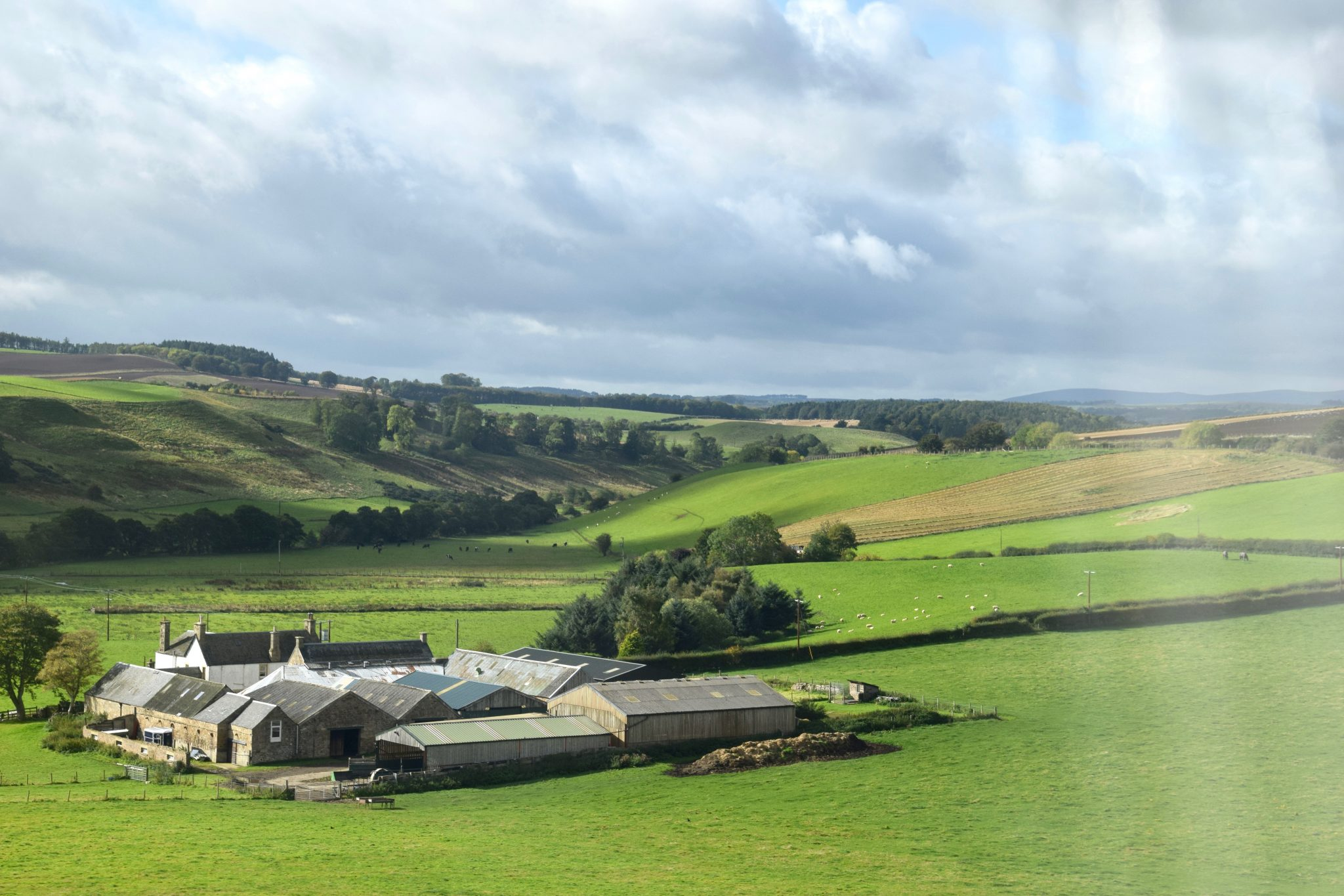 Scottish countryside from ScotRail train