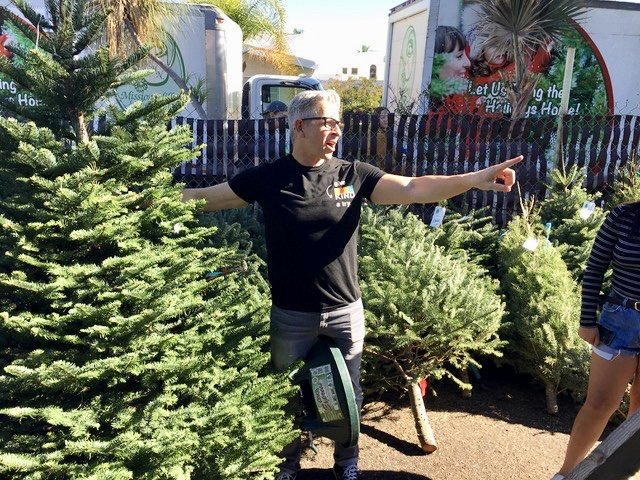Man pointing at tree in Christmas tree lot