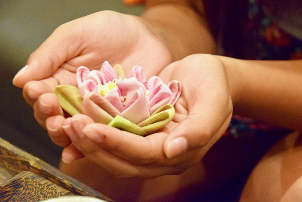 lotus flower in girl's hands