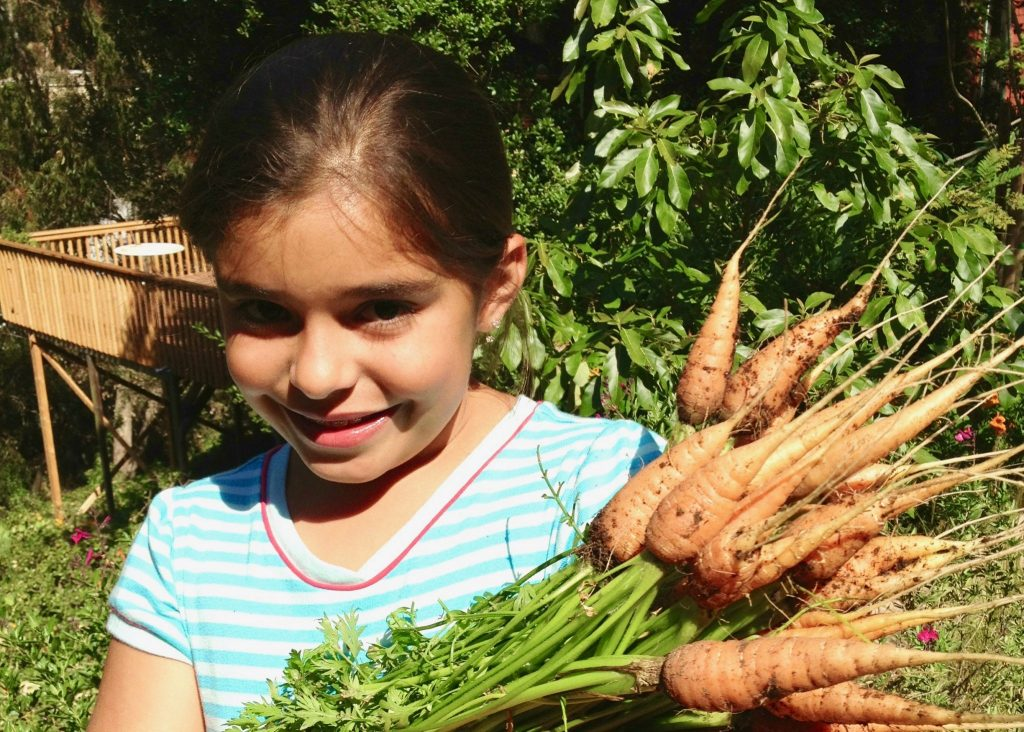 girl picking carrots