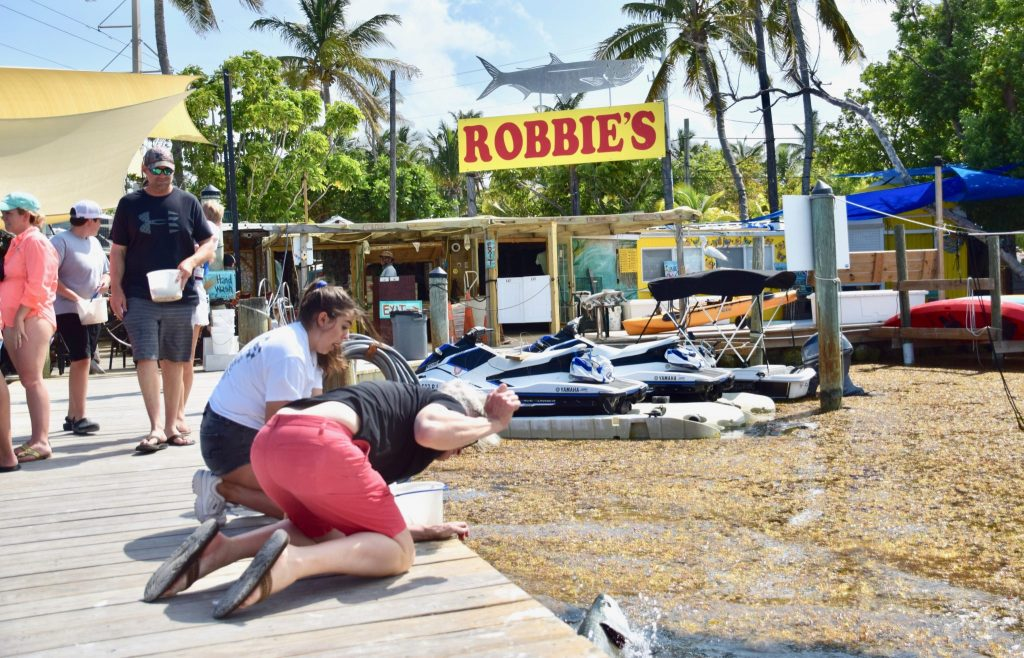 family feeds tarpons at Robbie's in Florida Keys