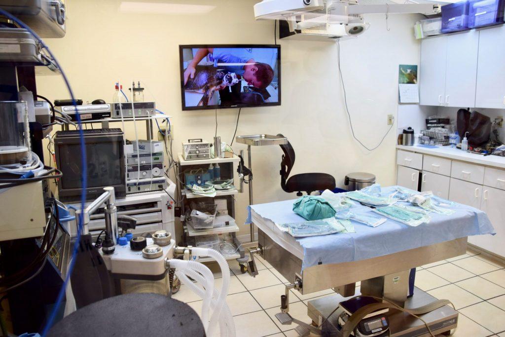 operating room at Turtle Hospital Florida Keys