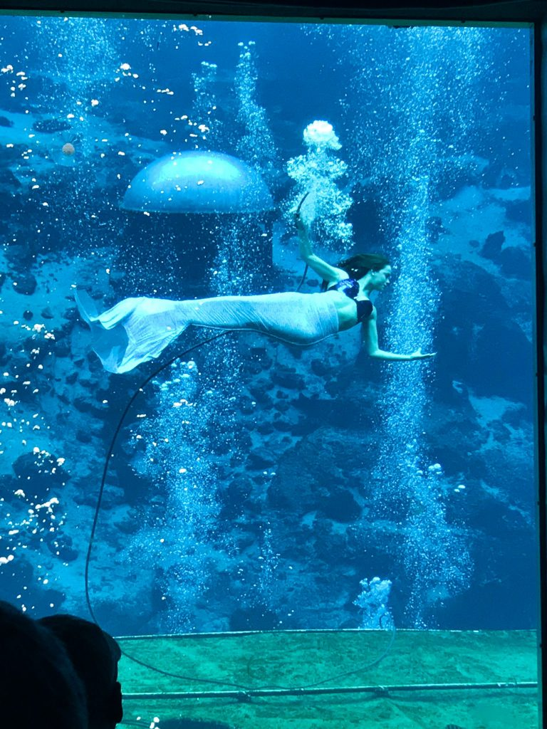 Mermaid at Weeki Wachee