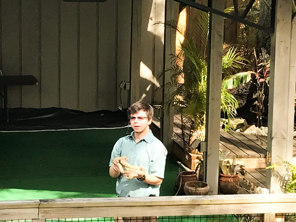 Wildlife Show at Weeki Wachee