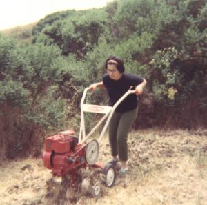 woman rototilling her garden in 1969