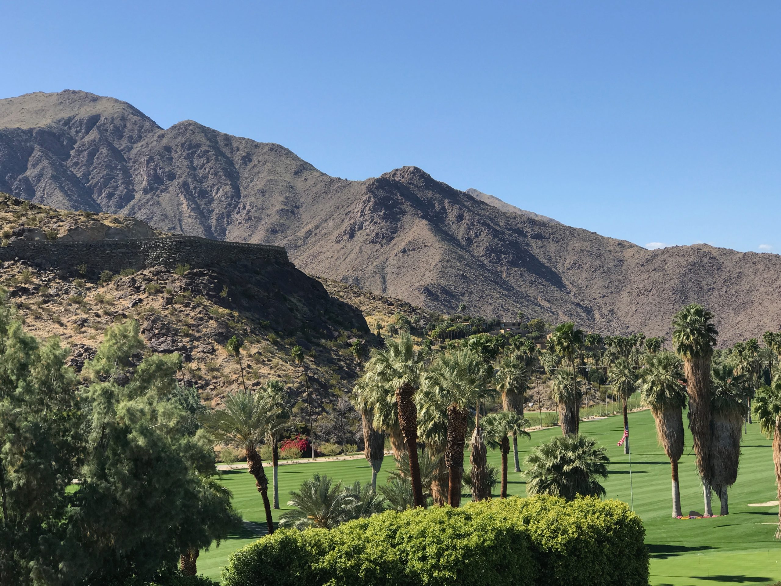 Palm Springs golf course greens with mountains in the background