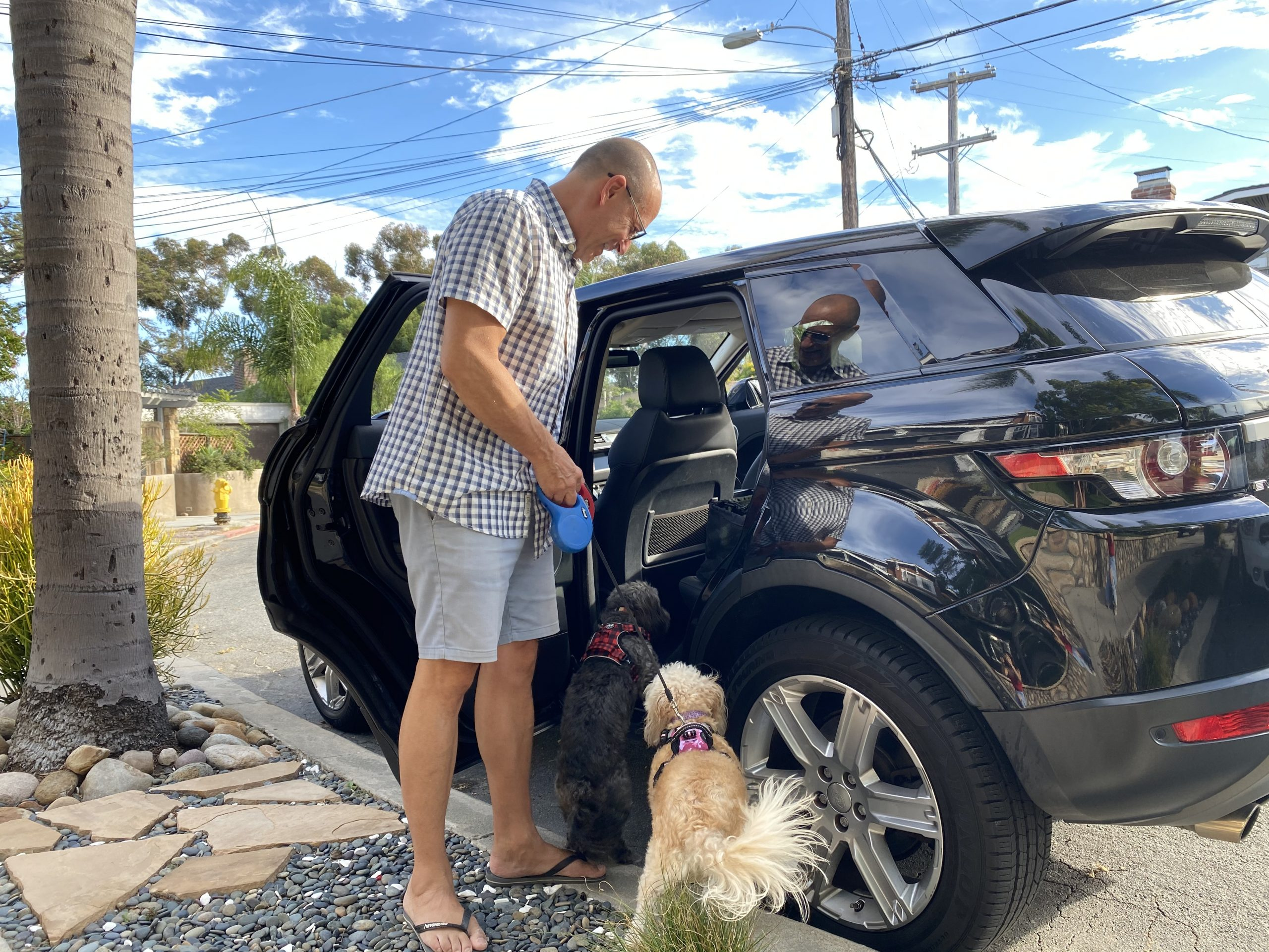 Man helps small dogs into back seat of car while parked curbside in neighborhood, San Diego, CA