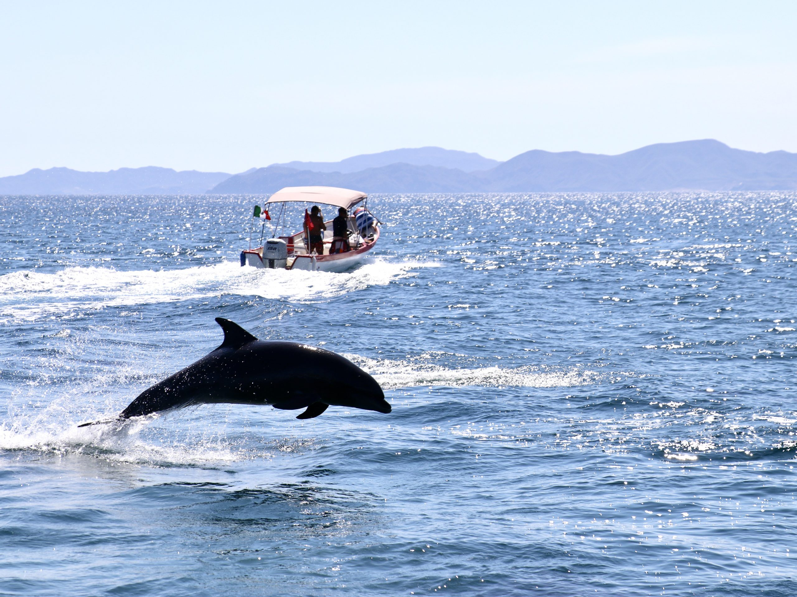 Loreto, MX Lures Visitors with Ocean Activities for Days