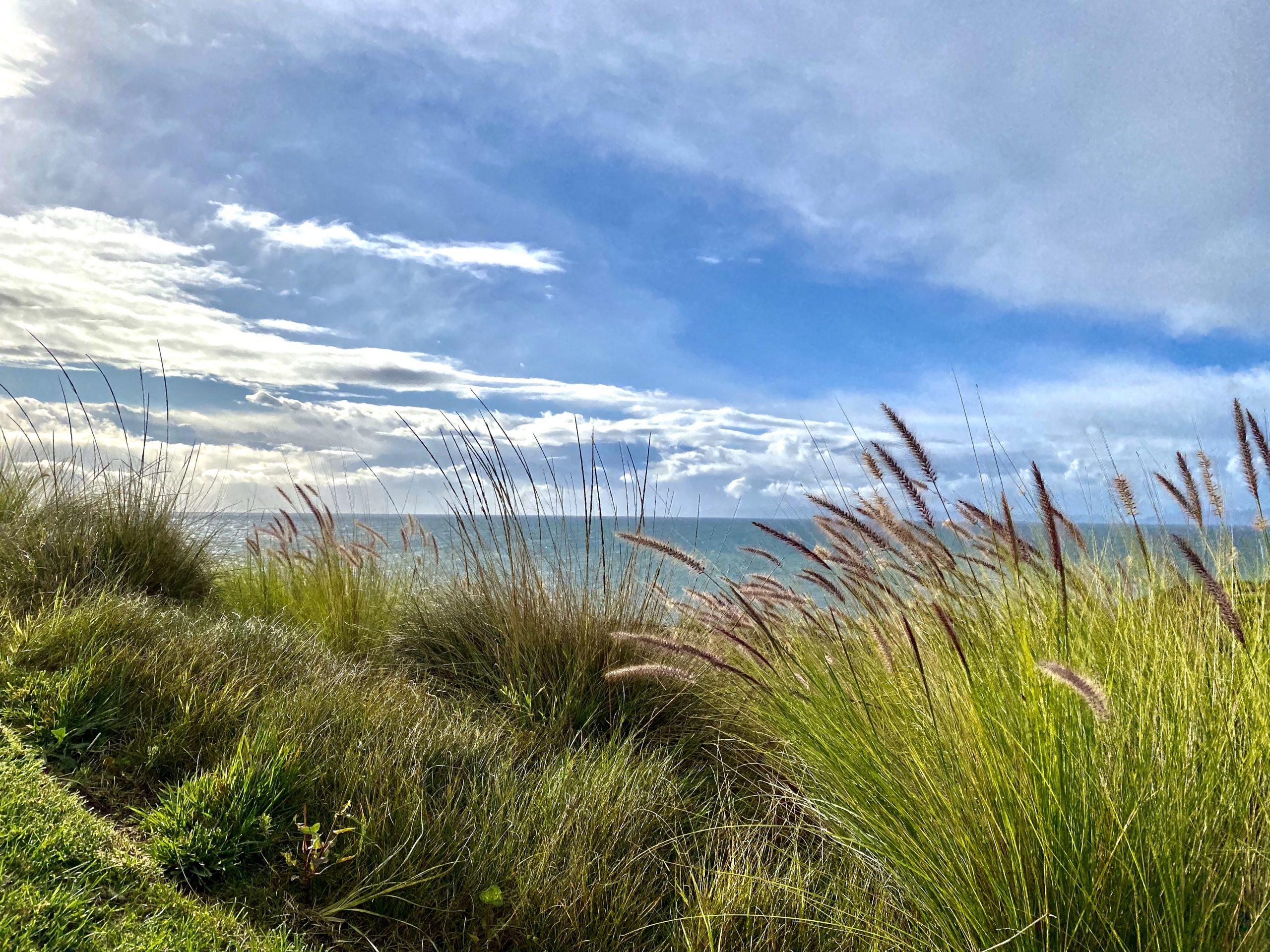 Sunny cliff front at Terranea Resort