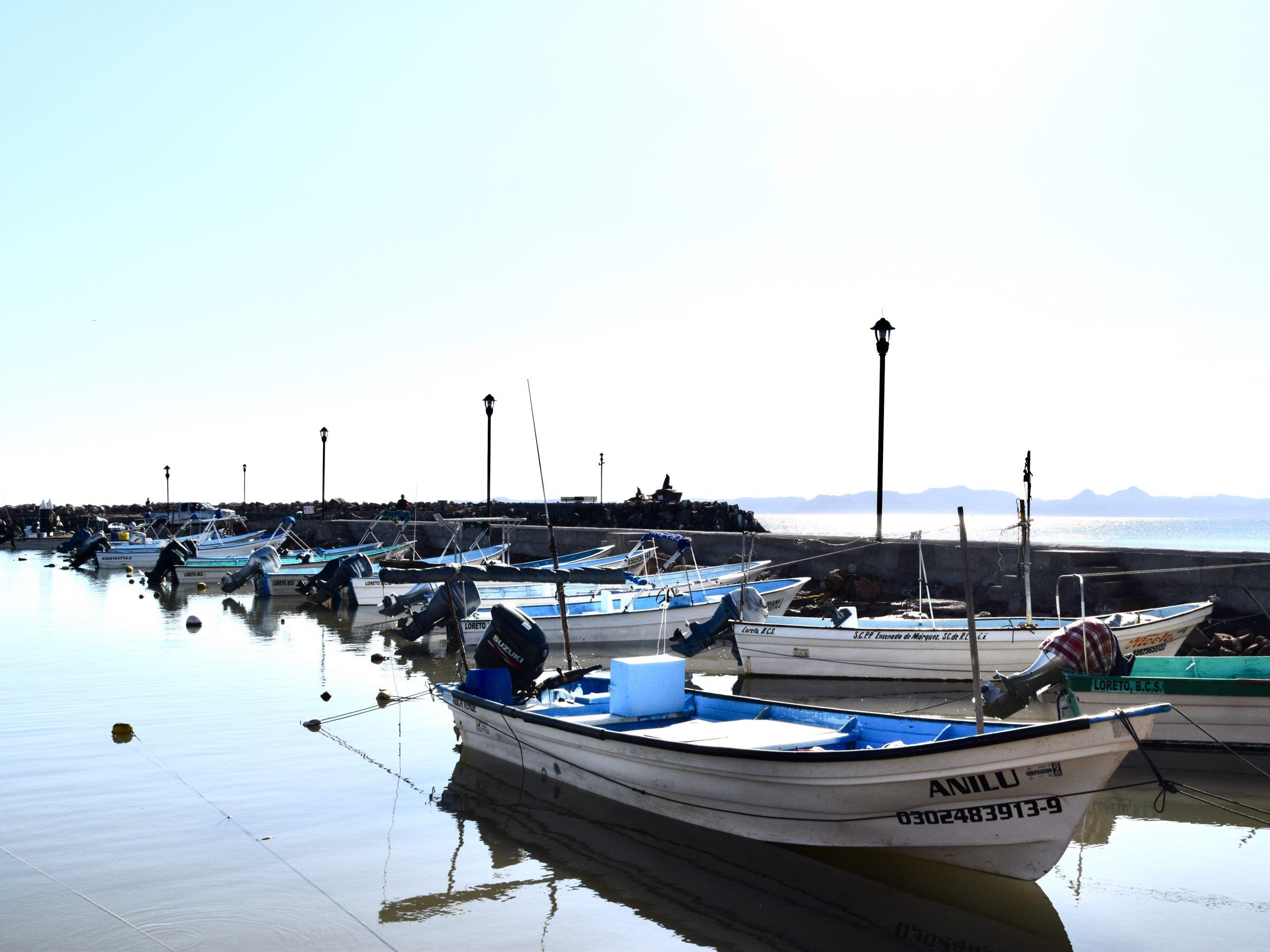 fishing boats in Loreto Harbor, Mexico