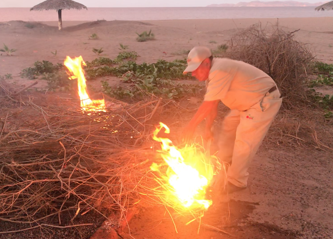 man burns dry brush over pit in sand to cook chocolata clams in Loreto, Mexico