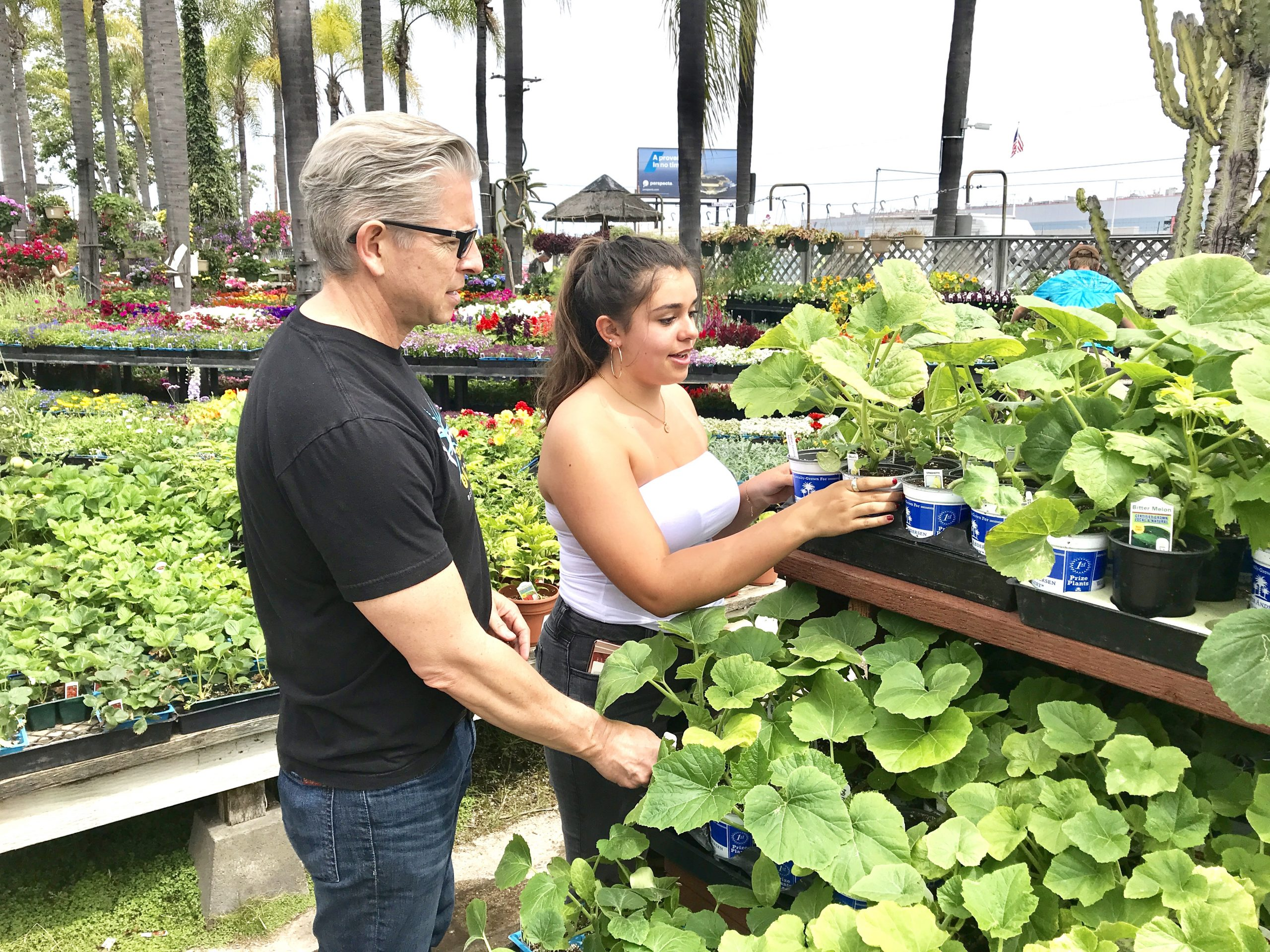 Dad and daughter choose new plants for the vegetable garden.